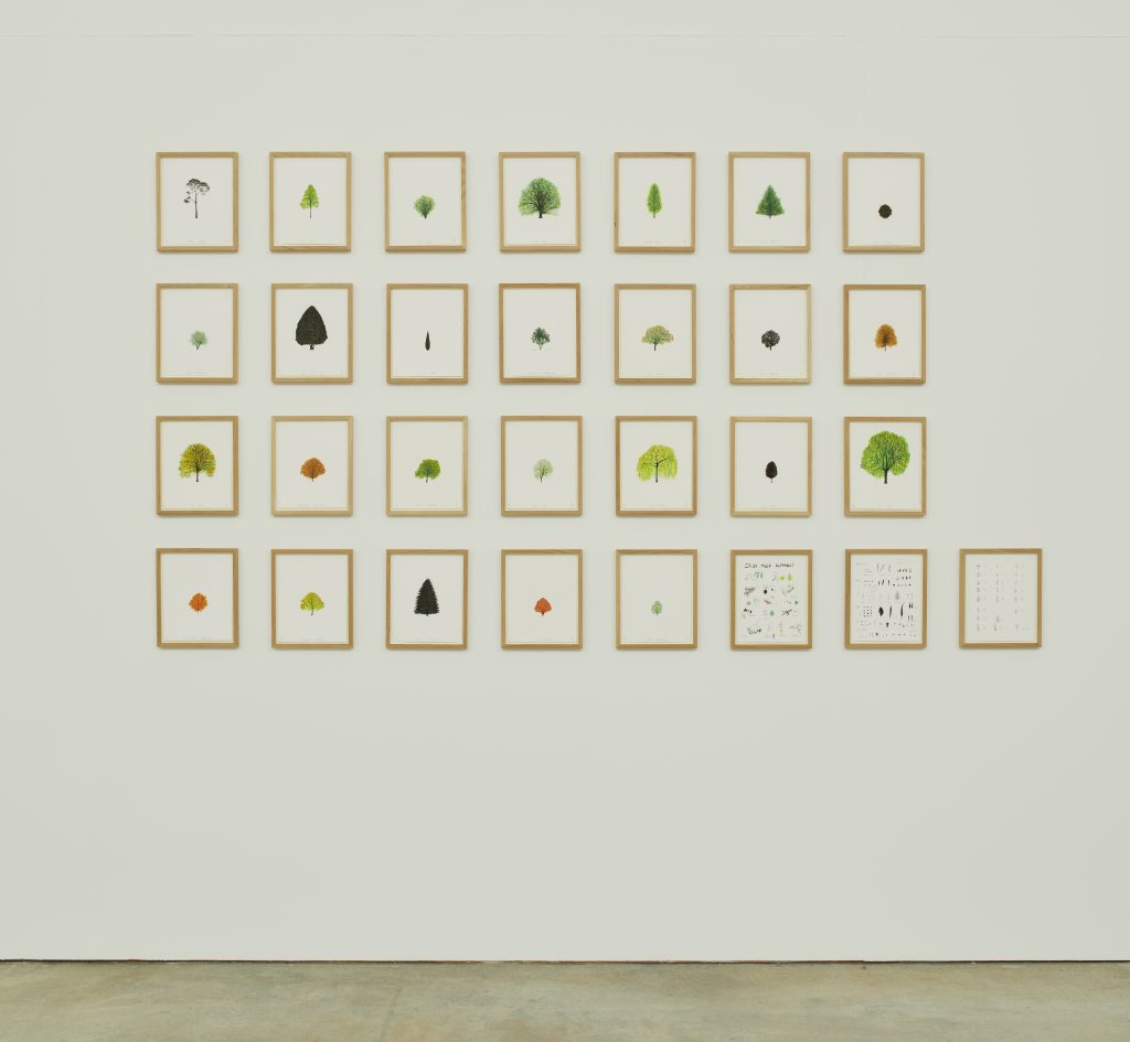 Image:  Katie Holten, Irish Tree Alphabet, 2020, vinyl wall drawing. Installation view, VISUAL Carlow. Photo by Ros Kavanagh. Courtesy the artist and VISUAL Carlow.