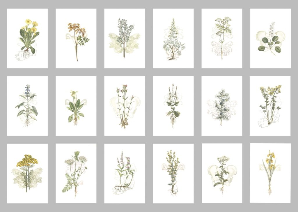 Image: Jennifer Trouton 'Mater Natura-The Abortionist's Garden', 2021, embroidery. Courtesy of the Artist.