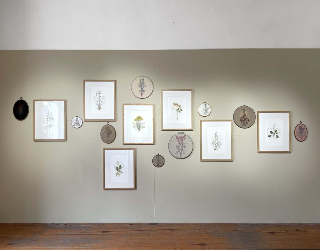 Image: Jennifer Trouton, some works from 'Mater Natura-The Abortionist's Garden' included in the exhibition 'One of Many' at Galway Arts Centre (installation view), 2021, embroidery. Courtesy of the Artist.