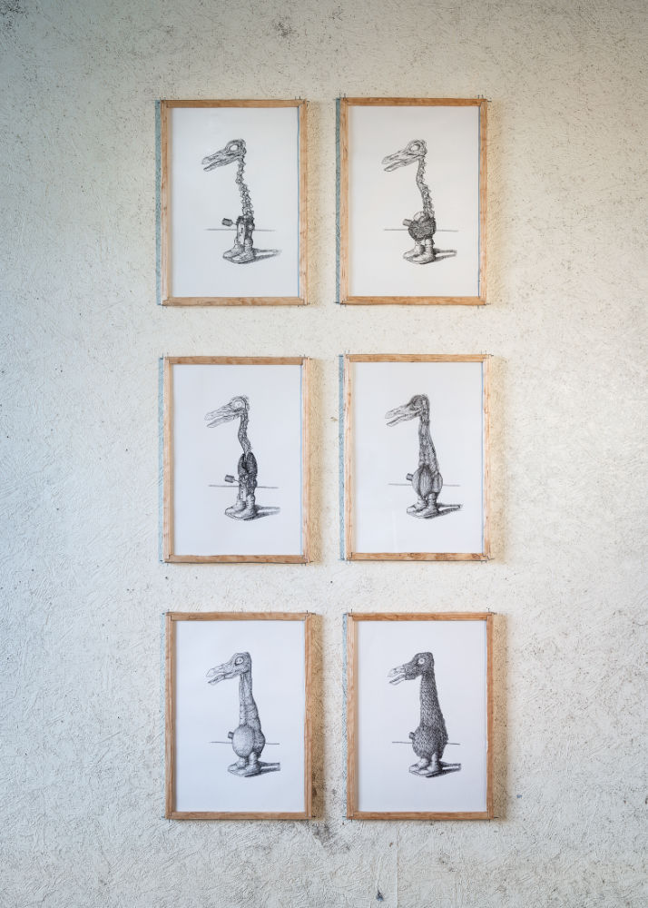 Image: Peter Nash 'Alternative Anatomies' (1-6), 2018, Indian ink drawing on paper in custom-made frames. Photo: Jed Niezgoda.
