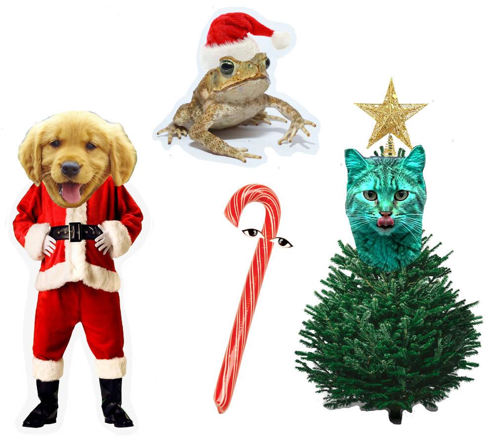 Christmas jumbles