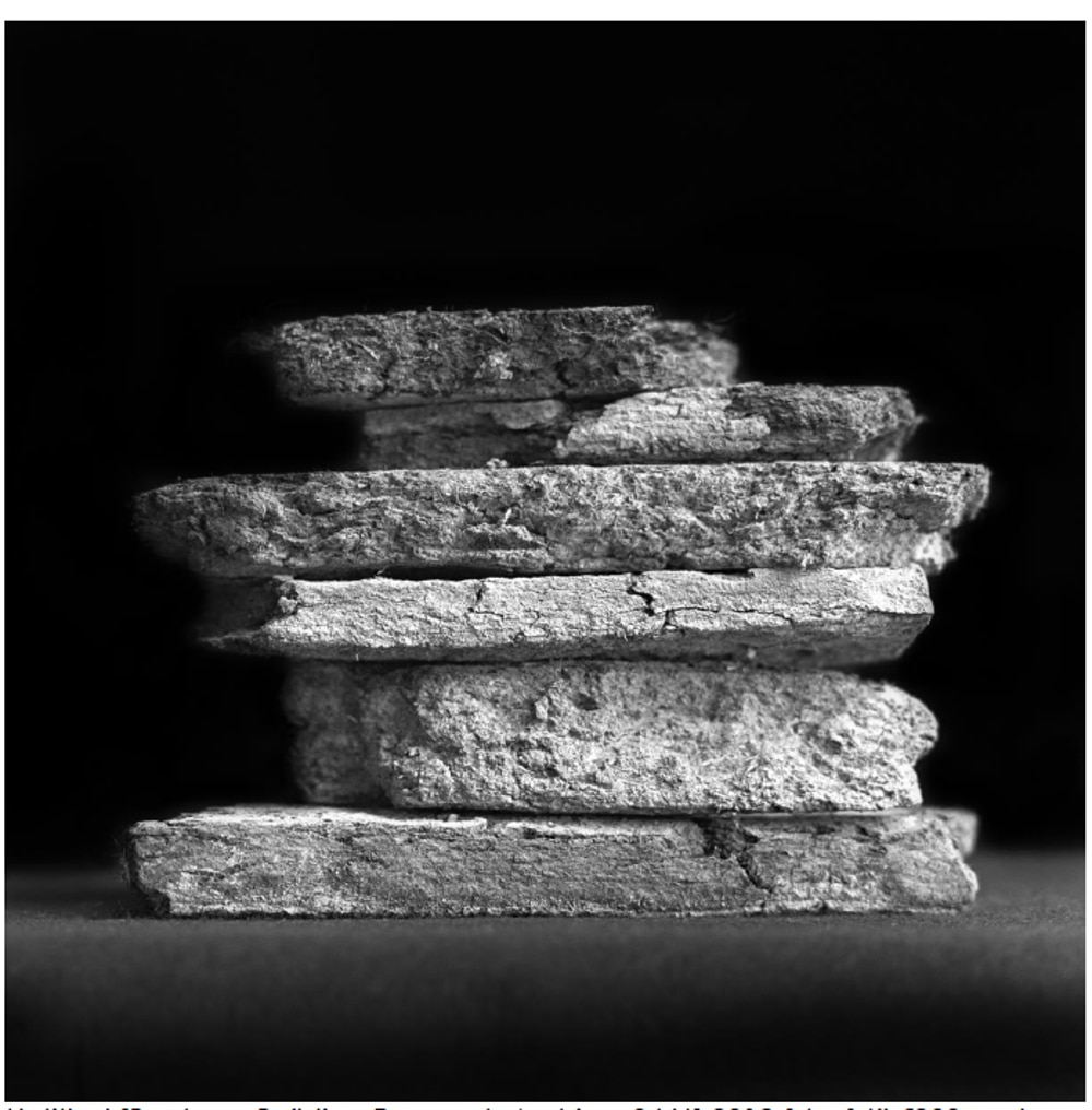 Image: Roseanne Lynch, Untitled [Bauhaus Building Research Archive, 96/6], silver gelatin fibre based paper by artist. Courtesy of the Artist.