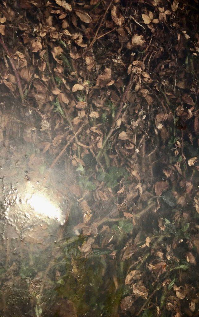 Image: Sarah O'Flaherty, Veiled 1 (Tunnel), chromogenic prints. Courtesy of the Artist.
