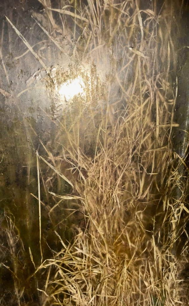Image: Sarah O'Flaherty, Veiled 2 (Tunnel), 2018, chromogenic prints. Courtesy of the Artist.